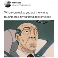 Memes, Breakfast, and 🤖: tranquilo  @JesseVallejOWNS  When you realize you put the wrong  mushrooms in your breakfast omelette 😟😟😟😟😟