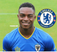 Chelsea have been given permission to take AFC Wimbledon winger Toyosi Olusanya on trial, the Daily Mirror reports. transfernews transfer transfertalk bpl: Transfer talk  Admiral  AFC  MEL SA  OTBALL  CLUB Chelsea have been given permission to take AFC Wimbledon winger Toyosi Olusanya on trial, the Daily Mirror reports. transfernews transfer transfertalk bpl