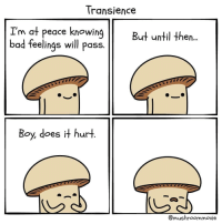 9gag, Bad, and Memes: Transience  I'm at peace knowing  bad feelings will pass.  But until then...  Boy, does it hurt  @mushroommovie The pain is real. By @mushroommovie comics hidethepain 9gag