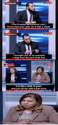 """Tree, Wife, and Muhammad: TRANSLATED DY  (The Prophet Muhammad said:)  """"If you beat your wife, do it with a siwak.""""  OR1@.TV 1 MEMRI σΑμ Τ  I brought you as an example  a twig from the pure Arak tree.  MEMRI sH TV MEMRI  It is like a stalk of grain,  and you hit her with it just once."""