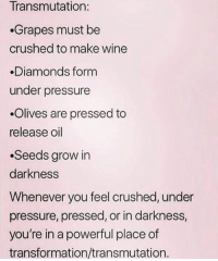 via Aware Wolf❤️🐺: Transmutation:  Grapes must be  crushed to make wine  Diamonds form  under pressure  .Olives are pressed to  release oil  .Seeds grow in  darkness  Whenever you feel crushed, under  pressure, pressed, or in darkness,  you're in a powerful place of  transformation/transmutation. via Aware Wolf❤️🐺