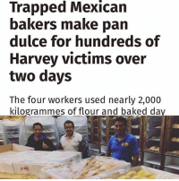 "Baked, Community, and Family: Trapped Mexican  bakers make pan  dulce for hundreds of  Harvey victims over  two days  The four workers used nearly 2,000  kilogrammes of flour and baked da [Read more] 🇲🇽This is why we love our people ❤❤❤ they were trapped and didn't need to do this, but they weren't thinking of just themselves - they were thinking about everyone else. That is the immigrant spirit. Houston ImmigrantJustice SiSePuede ・・・ Four bakers who became trapped in their bakery for two days in the wake of Hurricane Harvey made hundreds of loaves of bread to give to flood victims. The workers from the El Bolillo Bakery in Houston, Texas, used up nearly 2,000kg of flour to bake bread and pan dulce, Mexican sweet bread, throughout the night and day after they were left stranded by the floods over the weekend. The four bakers had been working on a late shift when they realised they could not leave the shop because of the level of water on the streets. To take their minds off worrying about their family and friends, they decided to continue to bake for those affected by the devastating downpours. The Mexican bakery, which specialises in Mexican cakes and patisseries, had remained dry and had not been cut off from electricity so the bakers were able to work throughout the night and the following day. Brian Alvarado, the manager of the shop on South Wayside Drive, told The Independent: ""When they realised they were stuck, they decided to keep themselves busy and help the community and made as many loaves of bread as they could. ""By the time the owner managed to get to them, they had made so much bread that we took the loaves to loads of emergency centres across the city for people affected by the floods. ""We didn't count exactly how many loaves they made, but they used 4,400 pounds [1,996kg] of flour."" hurricaneharvey Repost @iwakesheeple"