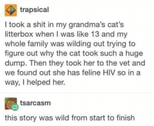 Cats, Family, and Shit: trapsical  I took a shit in my grandma's cat's  litterbox when I was like 13 and my  whole family was wilding out trying to  figure out why the cat took such a huge  dump. Then they took her to the vet and  we found out she has feline HIV so in a  way, I helped her.  tsarcasm  this story was wild from start to finish Tumblr Tells Some Wild Stories, And Here Are 19 Really Good Ones
