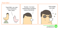 Memes, Trash, and Birds: Trash Bird  Trash Bird, you look  more handsome  than usual.  Thanks. I've been  conforming to society's  beauty standards.  And society  was right.  Read the comics on LINE WERTOON  WEB  to support the artists!  TOON  www.webtoons.com Trash Bird looks different...