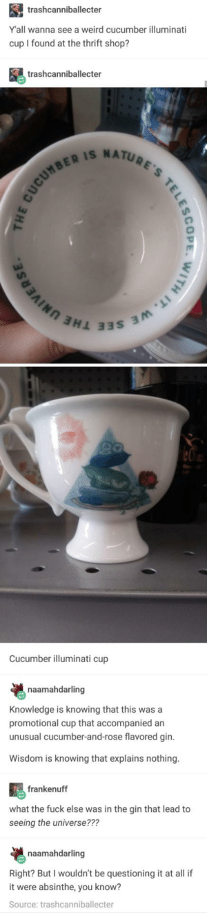 Illuminati, Thrift Shop, and Weird: trashcanniballecter  Y'all wanna see a weird cucumber illuminati  cup I found at the thrift shop?  trashcanniballecter  R IS NATU  ยู่ใ  ヨヨS 3M  Cucumber illuminati cup  naamahdarling  Knowledge is knowing that this was a  promotional cup that accompanied an  unusual cucumber-and-rose flavored gin.  Wisdom is knowing that explains nothing.  frankenuff  what the fuck else was in the gin that lead to  seeing the universe???  naamahdarling  Right? But I wouldn't be questioning it at all if  it were absinthe, you know?  Source: trashcanniballecter Cucumber Illuminati Cup