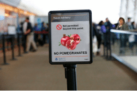 Travel, Tsa, and Beyond: Travel Advisory  Not permitted  beyond this point  NO POMEGRANATES  Tra  ministration  tsa.gov