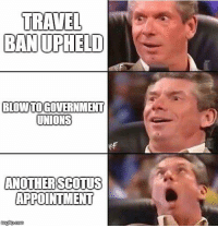 Memes, Travel, and 🤖: TRAVEL  BAN UPHELD  BLOWİTOGOVERNMENT  UNIONS  ANOTHERSCOTUS  APPOINTMENT  nglip.com (GC)