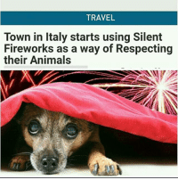 "Animals, Cars, and Cats: TRAVEL  Town in Italy starts using Silent  Fireworks as a way of Respecting  their Animal This is the best concept ever! Hope they start selling them everywhere! • Repost @chl0ster ・・・ Repost @4leglv ・・・ Any large celebration that involves fireworks is fun, but while we enjoy the sounds and sights of colourful explosions overhead, our animals feel very differently. The explosions caused by fireworks have been known to give some domestic pets heart problems, nausea, tremors, debilitating fears and light-headedness. We all know that animals have far more sensitive hearing so you won't be surprised to read that firework displays can leave pets with ""acoustic stress"". During firework displays animals are often confused as to where the loud noises are coming from which makes them run frantically away. Unfortunately, this sometimes results in them being hit by a car. Other animals may be too close to the explosion and receive burns or eye damage as a result. If you keep chickens, you might find that they produce fewer eggs after a firework display. People of the town of Collecchio in the province of Parma in Italy are doing something about it. The local government has introduced new legislation forcing citizens to use silent fireworks as a way of respecting the animals and reducing the stress caused them. The company, Setti Fireworks make fireworks which produce a spectacular light show but without the deafening sounds normally associated with a firework display. They design their fireworks to fit the venue and event that they will be used for. awesome vegansofig compassion activism animalwelfare dogsofinsta dog catsofinstagram cat 4thofjuly july4th respect"