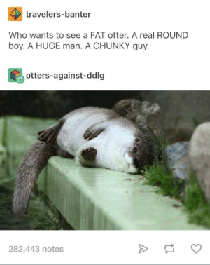Real otter hours who up: travelers-banter  Who wants to see a FAT otter. A real ROUND  boy. A HUGE man. A CHUNKY guy.  otters-against-ddlg  282,443 notes Real otter hours who up