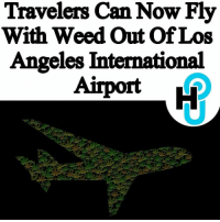 "@Regran_ed from @hollywoodunlocked - HU Staff Intern: Dawn Davis @Officialdawnrose LAX recently released a policy that would have seemed unheard of a few years ago. ____________________________________________________ According to sources, travelers are now allowed to pack marijuana along with their other travel essentials when flying out of Los Angeles International Airport. Airport police say they will not arrest or stop you if they find marijuana, colloquially known as weed or pot, in your carry-on travel bags. ____________________________________________________ The official website of Los Angeles International Airport (LAX) released their new marijuana policy. ""In accordance with Proposition 64, the Los Angeles Airport Police Department will allow passengers to travel through LAX with up to 28.5 grams of marijuana and eight grams of concentrated marijuana."" ____________________________________________________ Read more at thehollywoodunlocked.com, link in bio. - regrann: Travelers Can Now Fly  With Weed Out Of Los  Angeles International @Regran_ed from @hollywoodunlocked - HU Staff Intern: Dawn Davis @Officialdawnrose LAX recently released a policy that would have seemed unheard of a few years ago. ____________________________________________________ According to sources, travelers are now allowed to pack marijuana along with their other travel essentials when flying out of Los Angeles International Airport. Airport police say they will not arrest or stop you if they find marijuana, colloquially known as weed or pot, in your carry-on travel bags. ____________________________________________________ The official website of Los Angeles International Airport (LAX) released their new marijuana policy. ""In accordance with Proposition 64, the Los Angeles Airport Police Department will allow passengers to travel through LAX with up to 28.5 grams of marijuana and eight grams of concentrated marijuana."" ____________________________________________________ Read more at thehollywoodunlocked.com, link in bio. - regrann"