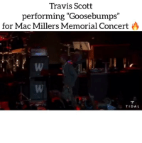 """macmiller celebrationoflife concert was held last night with @tidal with a few friends‼️ Follow @bars for more ➡️ DM 5 FRIENDS: Travis Scott  performing """"Goosebumps""""  (C  1)  for Mac Millers Memorial Concert  TIDAL macmiller celebrationoflife concert was held last night with @tidal with a few friends‼️ Follow @bars for more ➡️ DM 5 FRIENDS"""