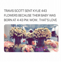 Love, Travis Scott, and Wow: TRAVIS SCOTT SENT KYLIE 443  FLOWERS BECAUSE THEIR BABY WAS  BORN AT 4:43 PM. WOW.. THAT'S LOVE i love them