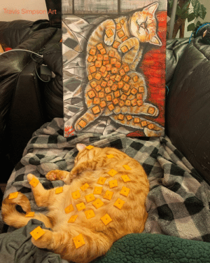 Cheezit the cat is a heavy sleeper: Travis Simpson Art Cheezit the cat is a heavy sleeper