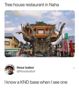No adults allowed.: Tree house restaurant in Naha  (アジア食堂  Nosa Isabor  @Nosalsabor  Iknow a KND base when I see one No adults allowed.
