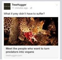 """Animals, Future, and Gif: TreeHugger  11 minutes ago.  treehugge  What if prey didn't have to suffer?  Meet the people who want to turn  predators into vegans  treehugger.com <p><a href=""""http://bedpolebed.tumblr.com/post/123487680626/elegantly-effervescent-sodomymcscurvylegs"""" class=""""tumblr_blog"""">bedpolebed</a>:</p>  <blockquote><p><a href=""""http://elegantly-effervescent.tumblr.com/post/119110171700/sodomymcscurvylegs-starkillerrx"""" class=""""tumblr_blog"""">elegantly-effervescent</a>:</p>  <blockquote><p><a href=""""http://sodomymcscurvylegs.tumblr.com/post/115246259649/starkillerrx-minority-privilege"""" class=""""tumblr_blog"""">sodomymcscurvylegs</a>:</p><blockquote><p><a href=""""http://starkillerrx.tumblr.com/post/115113013309/minority-privilege-shybutnotsilent"""" class=""""tumblr_blog"""">starkillerrx</a>:</p><blockquote><p><a href=""""http://minority-privilege.tumblr.com/post/115109942145/shybutnotsilent-meme-lord-mcgee-arlluk"""" class=""""tumblr_blog"""">minority-privilege</a>:</p><blockquote><p><a href=""""http://shybutnotsilent.tumblr.com/post/115105252465/meme-lord-mcgee-arlluk-there-are-actual-people"""" class=""""tumblr_blog"""">shybutnotsilent</a>:</p><blockquote><p><a href=""""http://meme-lord-mcgee.tumblr.com/post/114949586105/arlluk-there-are-actual-people-out-there-who"""" class=""""tumblr_blog"""">meme-lord-mcgee</a>:</p><blockquote><p><a href=""""http://arlluk.tumblr.com/post/114868595189/there-are-actual-people-out-there-who-want-to"""" class=""""tumblr_blog"""">arlluk</a>:</p><blockquote><p>there are actual people out there who want to genetically modify carnivores so they no longer eat other animals </p><p>im going to fly away from this planet goodbye</p></blockquote><p>yeah let's just fuck up the entire ecosystem because i'm uncomfortable with the fact that nature doesn't conform to my world-views.</p></blockquote><p>#hopefully satire</p><p><a href=""""http://www.hedweb.com/abolitionist-project/reprogramming-predators.html"""">I think I just crushed your hopes…</a> </p></blockquote>  <p>fUCK</p></blockquote>  <figure data-or"""