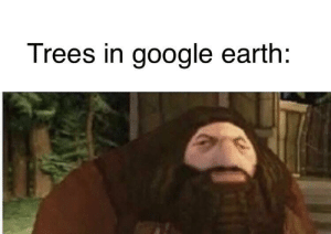 Hmmm yes: Trees in google earth: Hmmm yes
