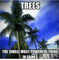 """Comment, """"hacks"""" letter by letter if you've died by a tree in a game 🌴🌲 - New follower? Welcome to my page! 😈 For some crazy killchains and sniping feeds go check out my team @RiZe_Above.All - GamingPosts CaulOfDuty Gaming Gamer Relatable Lit tzanthemchallenge Selfie Like4Like Meme Memes GamingMemes GamingMeme CallOfDuty potd codmemes PhotoOfTheDay Funny Twitter InfiniteWarfare CodIW GTA Xbox Playstation Ps4 YouTube Lmao Comedy Minecraft Like4Follow: TREES  THE SINGLE MOSTPOWERFUL THING  IN GAMES Comment, """"hacks"""" letter by letter if you've died by a tree in a game 🌴🌲 - New follower? Welcome to my page! 😈 For some crazy killchains and sniping feeds go check out my team @RiZe_Above.All - GamingPosts CaulOfDuty Gaming Gamer Relatable Lit tzanthemchallenge Selfie Like4Like Meme Memes GamingMemes GamingMeme CallOfDuty potd codmemes PhotoOfTheDay Funny Twitter InfiniteWarfare CodIW GTA Xbox Playstation Ps4 YouTube Lmao Comedy Minecraft Like4Follow"""