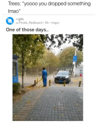 "Funny, Gifs, and Imgur: Trees: ""yoooo you dropped something  Imao""  r/gifs  u/Pirate_Redbeard. 9h imgur  ne of those days The trees wrong for that😂💀"