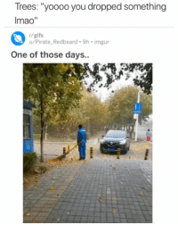 "Memes, Gifs, and Imgur: Trees: ""yoooo you dropped something  Imao""  r/gifs  u/Pirate Redbeard.9h imgur  One of those days.."