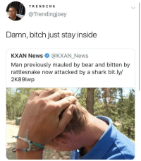 Be Like, Bitch, and Blackpeopletwitter: TRENDING  @Trendingjoey  Damn, bitch just stay inside  KXAN News @KXAN_News  Man previously mauled by bear and bitten by  rattlesnake now attacked by a shark bit.ly/  2K89lwp Be like Spongebob in Season 3 Episode 56 (via /r/BlackPeopleTwitter)