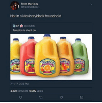 That shit thiicccc with sugar • ➫➫➫ Follow @Staggering for more funny posts daily!: Trent Martinez  @trentmartinez  Not in a Mexican/black household  CF@colyfab  Tampico is slept on.  7/11/17, 7:32 PM  4,621 Retweets 6,992 Likes That shit thiicccc with sugar • ➫➫➫ Follow @Staggering for more funny posts daily!