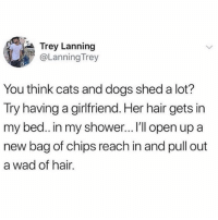 Cats, Dogs, and Memes: Trey Lanning  @Lanning Trey  You think cats and dogs shed a lot?  Try having a girlfriend. Her hair gets in  my bed.. in my shower... I'l open up a  new bag of chips reach in and pull out  a wad of hair. 😂😂