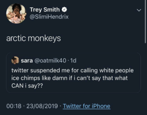 blacktwittercomedy:  Black Twitter: Trey Smith  @SlimiHendrix  arctic monkeys  sara @oatmilk40 1d  twitter suspended me for calling white people  ice chimps like damn if i can't say that what  CAN i say??  00:18 23/08/2019 Twitter for iPhone blacktwittercomedy:  Black Twitter