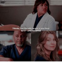 greysanatomy   webber is me: Tributes, may the odds be ever in yourfavor  9x 13 GREY SCAPSS greysanatomy   webber is me