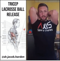 RELEASING THE TRICEPS LONG HEAD We often think of the tricep as just an elbow muscle, but it's actually a shoulder muscle too. The long head of the triceps, the inner most one, crosses both the shoulder and the elbow. As such, it can be a 🛇limiting factor in shoulder flexion, especially the front rack position where we have the elbow bent as well. . It can also develop 😲hypersensitive areas that can refer pain to both the lateral deltoid or lateral elbow. So it can sometimes mimic shoulder pain or tennis elbow, making it worth a look if you've been dealing with either of those and haven't been making progress. . Here I show you a way to test the mobility of the long head as well as a quick release. Do this before your next 🏋 lifting session and see how much more comfortable it becomes to front squat or catch a clean and jerk! Tag a friend and share the wealth! MyodetoxOrlando Myodetox: TRICEP  LACROSSE BALL  RELEASE  head  adnjacob harden  Spors Therapy RELEASING THE TRICEPS LONG HEAD We often think of the tricep as just an elbow muscle, but it's actually a shoulder muscle too. The long head of the triceps, the inner most one, crosses both the shoulder and the elbow. As such, it can be a 🛇limiting factor in shoulder flexion, especially the front rack position where we have the elbow bent as well. . It can also develop 😲hypersensitive areas that can refer pain to both the lateral deltoid or lateral elbow. So it can sometimes mimic shoulder pain or tennis elbow, making it worth a look if you've been dealing with either of those and haven't been making progress. . Here I show you a way to test the mobility of the long head as well as a quick release. Do this before your next 🏋 lifting session and see how much more comfortable it becomes to front squat or catch a clean and jerk! Tag a friend and share the wealth! MyodetoxOrlando Myodetox