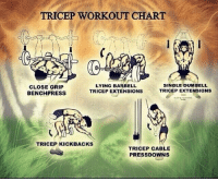 Memes, Exercise, and Charts: TRICEP WORKOUT CHART  LYING BARBELL  SINGLE DUMBELL  CLOSE GRIP  TRICEP EXTENSIONS  TRICEP EXTENSIONS  BENCH PRESS  TRICEP KICK BACKS  TRICEP CABLE  PRESSDOWNS RT @GymGoers: Tricep exercises