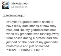 "Cute, Fucking, and Grandma: tricksterneon  leximaven  quietzombiegirl:  everyone's grandparents seem to  have really cute stories of how they  met, and like my grandparents met  when my grandma was running away  from police during a protest and she  jumped on the back of my grandads  motorcycle and just screamed  ""DRIVE FUCKING DRIVE"" And that kids is how I met your grandmother"