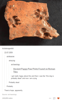 "Apparently, Dank, and Puppies: tricksters gambit  22-07-2009  aimlessme  annoying  archaeol  Ancient Puppy Paw Prints Found on Roman  Tiles  i got really happy about this and then i was like ""this dog is  probably dead"" and now i am crying  Probably dead  Probably  There's hope, apparently.  Source: archaeology  249,890 notes"