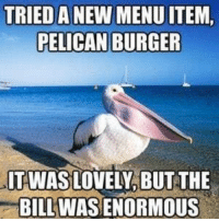 Memes, New, and Bill: TRIED A NEW MENU ITEM,  IT WAS LOVELY, BUT THE  BILL WAS ENORMOUS Memes
