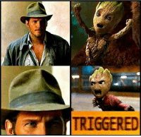 NEVER WEAR A HAT IN FRONT OF BABY GROOT 😂: TRIGGERED NEVER WEAR A HAT IN FRONT OF BABY GROOT 😂