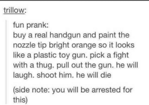 Fun Pranksomg-humor.tumblr.com: trillow:  fun prank:  buy a real handgun and paint the  nozzle tip bright orange so it looks  like a plastic toy gun. pick a fight  with a thug. pull out the gun. he will  laugh. shoot him. he will die  (side note: you will be arrested for  this) Fun Pranksomg-humor.tumblr.com