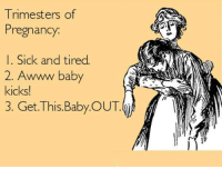Sounds about right. I LOVED the second trimester with all six of my babies, the others not so much.    Anne Smith, IBCLC www.breastfeedingbasics.com: Trimesters of  Pregnancy  I. Sick and tired.  2. Awwww baby  kicks!  3. Get. This Baby OUT Sounds about right. I LOVED the second trimester with all six of my babies, the others not so much.    Anne Smith, IBCLC www.breastfeedingbasics.com