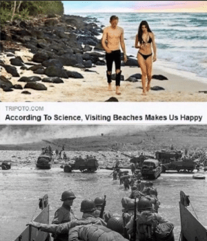 Storm the beaches by soysauce235 MORE MEMES: TRIPOTO.COM  According To Science, Visiting Beaches Makes Us Happy Storm the beaches by soysauce235 MORE MEMES