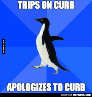 Apologize to inanimate objectsomg-humor.tumblr.com: TRIPS ON CURB  APOLOGIZES TO CURB  CHECK OUT MEMEPIX.COM  MEMEPIX.COM Apologize to inanimate objectsomg-humor.tumblr.com