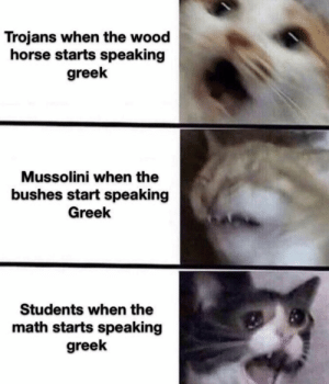 They're speaking the language of gods: Trojans when the wood  horse starts speaking  greek  Mussolini when the  bushes start speaking  Greek  Students when the  math starts speaking  greek They're speaking the language of gods