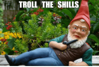 Troll, Time, and Git: TROLL THE SHILLS  imgfip.com