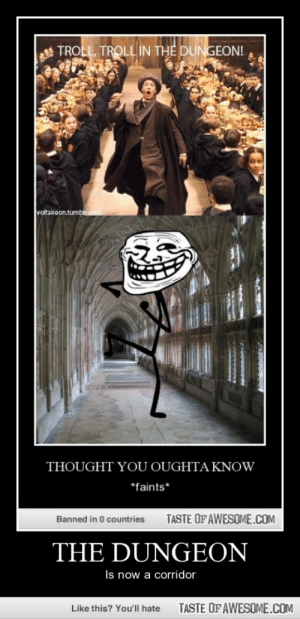 The Dungeonhttp://omg-humor.tumblr.com: TROLL, TROLL IN THE DUNGEON!  voltaireon.tumblr.com  THOUGHT YOU OUGHTA KNOW  *faints*  TASTE OF AWESOME.COM  Banned in 0 countries  THE DUNGEON  Is now a corridor  TASTE OF AWESOME.COM  Like this? You'll hate The Dungeonhttp://omg-humor.tumblr.com