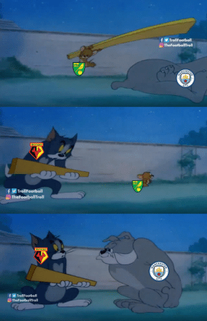 Memes, 🤖, and City: TrollFootball  O TheFootballTroll  BARCHERIE  CITY   WATFORD  f  O TheFootballTroll  TrollFootball   WATFORD  PARCHEATE  CITY  OD  fTrollFootball  TheFootballTroll What really happened https://t.co/JpTwo4ypPM