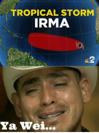 Espanol, LatinoPeopleTwitter, and Storm: TROPICAL STORM  IRMA  Ya Wei... PINCHE PENDEJO GUEY!