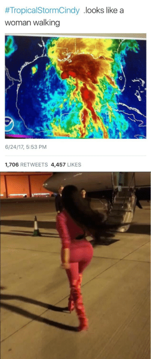 Target, Tumblr, and Blog:  #TropicalStormCindy . looks like a  woman walking  6/24/17, 5:53 PM  1,706 RETWEETS 4,457 LIKES drippingingold:  igglooaustralia: She's probably coming from Prague You bitchens can't even spell prague