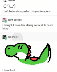 "Yosh C"")_-): tropluS  I can't believe how perfect this yoshi emote is  paint-sponge  i thought it was a face staring in awe at its flexed  bicep  concheror  i drew it out Yosh C"")_-)"