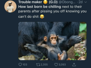"Being Alone, Dank, and Memes: Trouble maker (G.0) @Obong... . 2d  How last born be chilling next to thei  parents after pissing you off knowing you  can't do shit  lal  0103 п  2,355  3,093 ""Just pray Mom never leaves you alone with me again"" by KingPZe MORE MEMES"