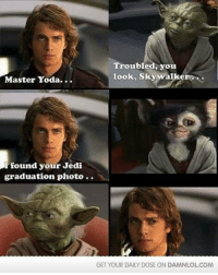 master yoda: Troubled, you  Look, Skywalker...  Master Yoda...  found your Jedi  graduation photo.  GET YOUR DAILY DOSE ON DAMNLOL COM