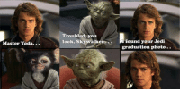 <p>Graduation Photo.</p>: Troubled, you  look, Skywalkero.found your Jedi  Master Yoda.  raduation photo.. <p>Graduation Photo.</p>