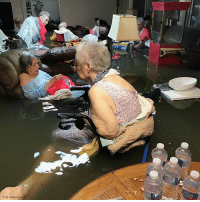 Memes, Home, and Hurricane: Trudy Lampson via In this shocking photo, residents of a Texas nursing home sit in waist-deep flood waters caused by Hurricane Harvey. Authorities said all the residents were safely evacuated from the facility.