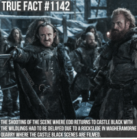 "According to Owen Teale (Alliser Thorne) ""A piece of rock the size of a London townhouse just fell."" gameofthrones gameofthronesfamily asoiaf asongoficeandfire castleblack eddisontollett tormundgiantsbane tv follow: TRUE FACT #1142  THE SHOOTING OF THE SCENE WHERE EDDRETURNS TO CASTLE BLACK WITH  THE WILDLINGS HAD TO BE DELAYED DUE TO A ROCKSLIDE IN MAGHERAMORNE  QUARRY WHERE THE CASTLE BLACK SCENES ARE FILMED According to Owen Teale (Alliser Thorne) ""A piece of rock the size of a London townhouse just fell."" gameofthrones gameofthronesfamily asoiaf asongoficeandfire castleblack eddisontollett tormundgiantsbane tv follow"